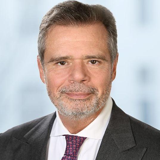 Prof. Dr. Friedbert Pflueger
